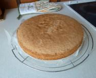 Biskuit Torte